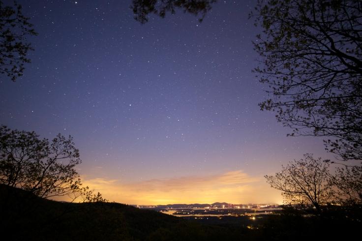 night-clouds-summer-trees.jpg