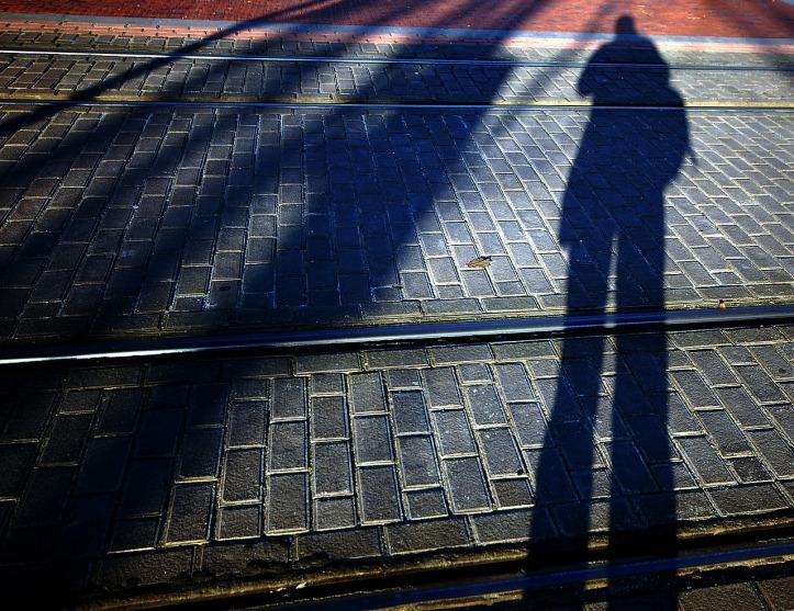 shadows-784185_1280