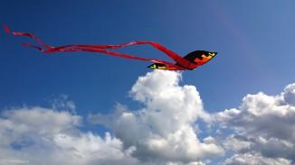 kite-1375114_1920