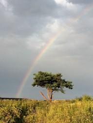rainbow-171758_1920