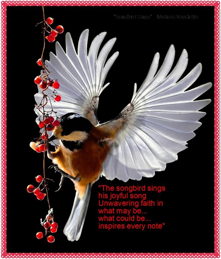 songbird-sings